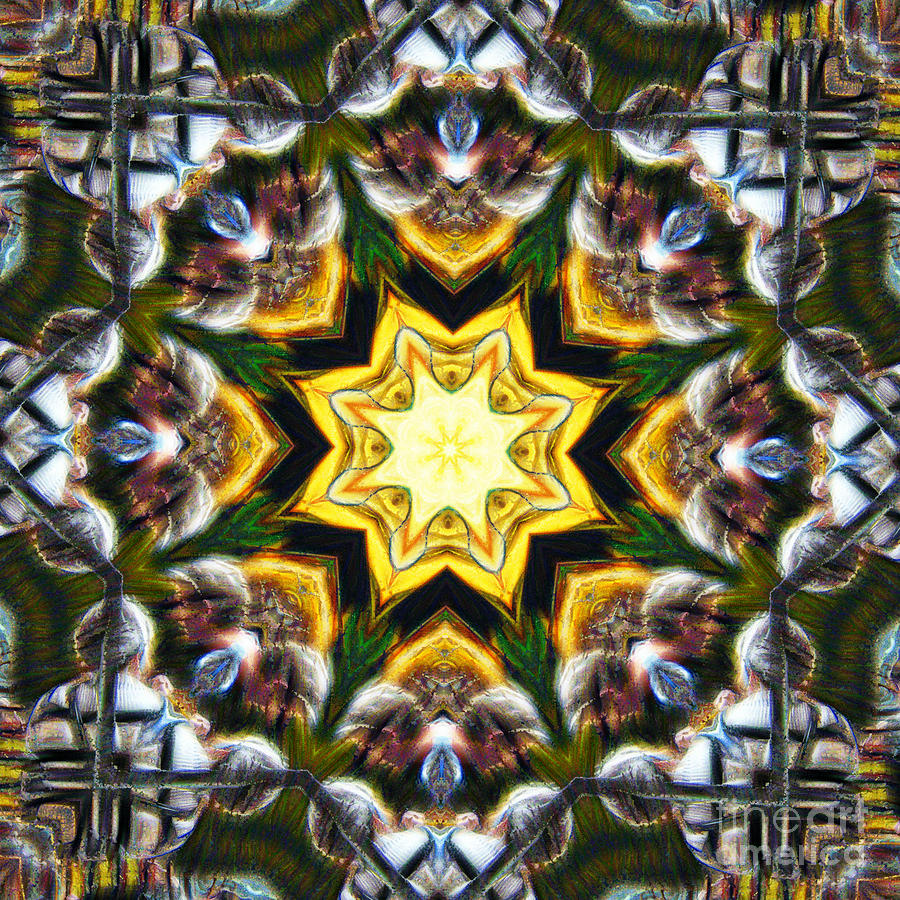 10447 Borough Market Stall Kaleidoscope Photograph by Colin Hunt