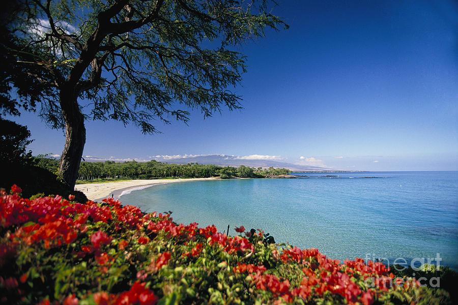 Afternoon Photograph - Mauna Kea Beach by Dana Edmunds - Printscapes