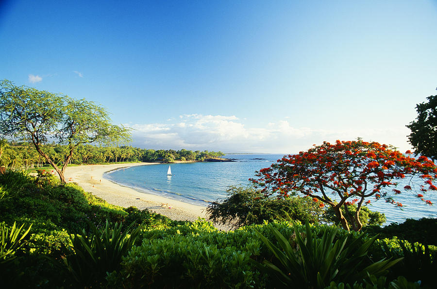 Afternoon Photograph - Mauna Kea Beach by Peter French - Printscapes
