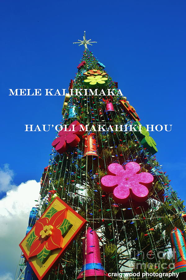 Hawaiian Merry Christmas.Merry Christmas Happy New Year Hawaiian