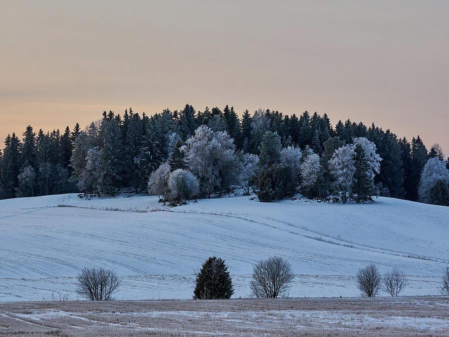 Finland Photograph - Mihari by Jouko Lehto
