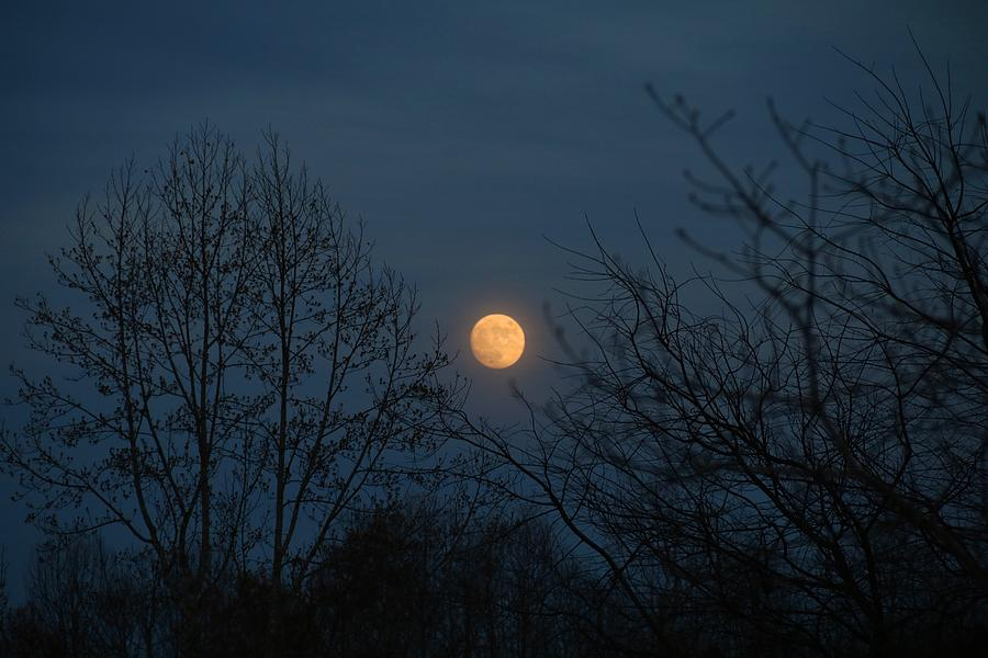 Moon Photograph - Misty Moonrise by Kathryn Meyer
