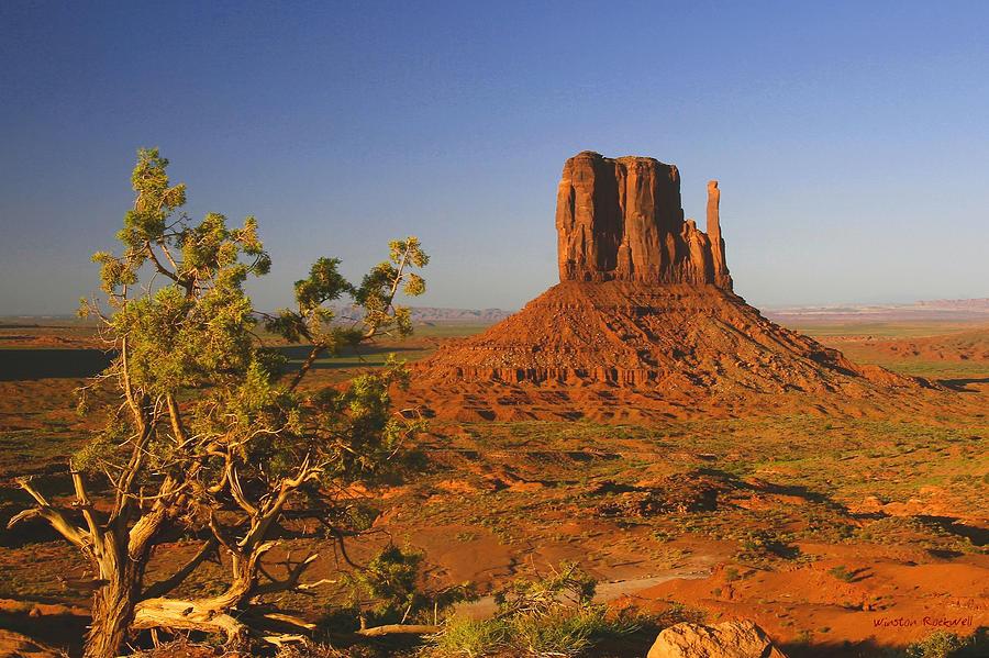 Arizona Photograph - Mitten and Juniper by Winston Rockwell