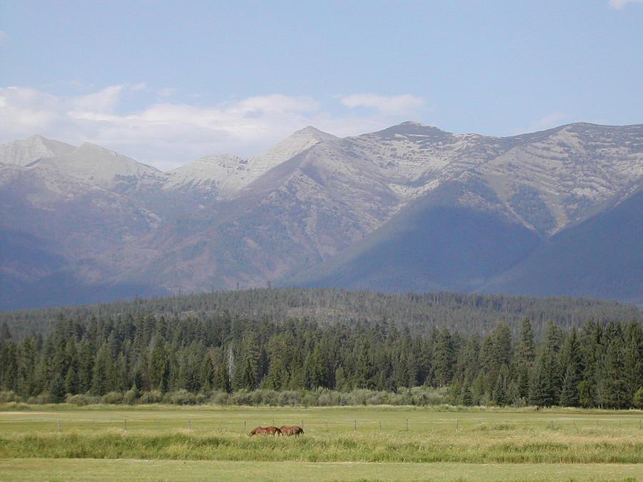 Montana Photograph - Montana Mountains by Lisa Patti Konkol