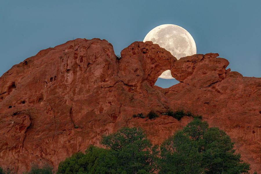 Moon Behind Kissing Camels by David Soldano