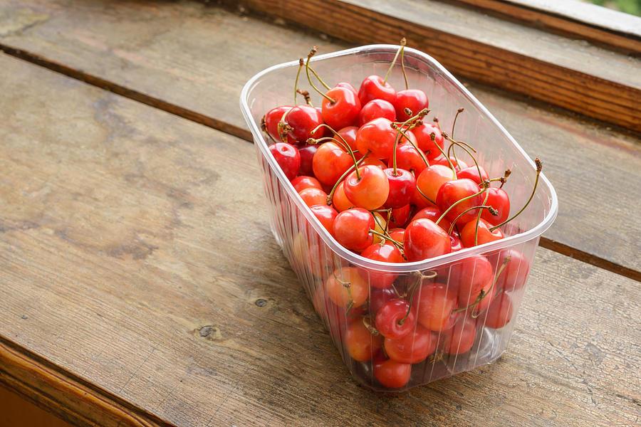 Montmorency Photograph - Morello Cherries by Alain De Maximy