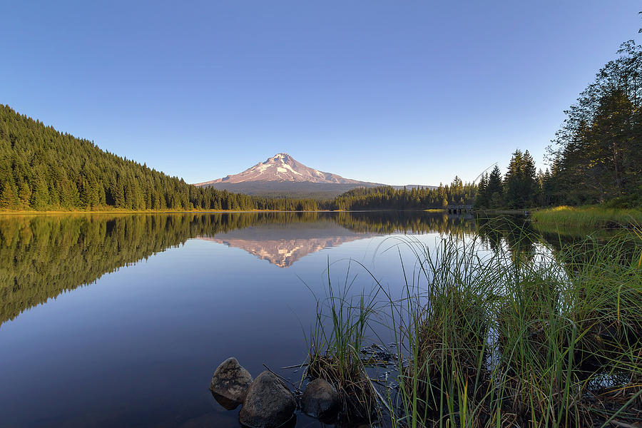 Mount Photograph - Mount Hood At Trillium Lake by David Gn