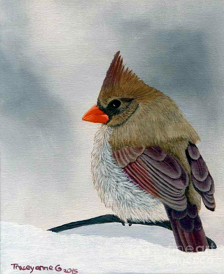 Mrs. Cardinal by Tracey Goodwin
