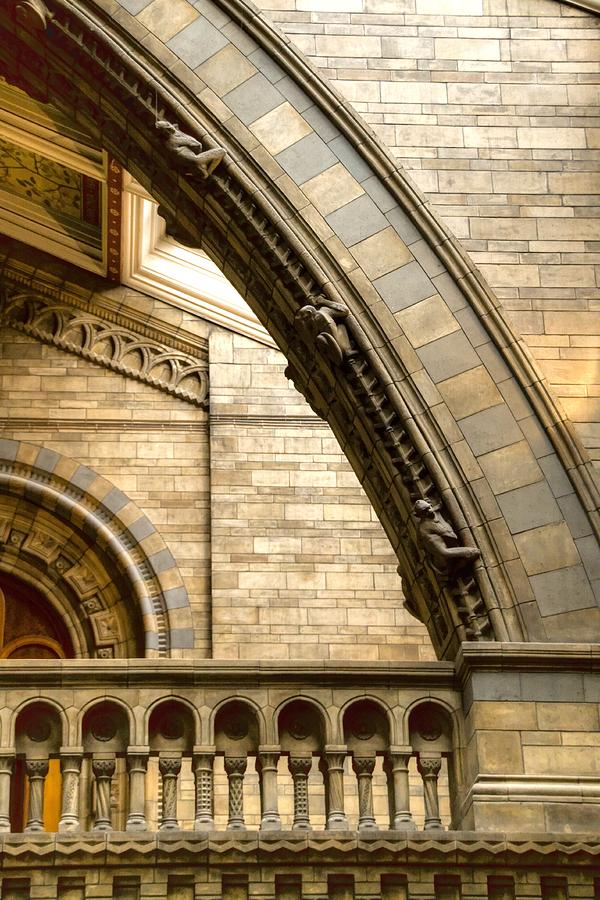 Natural History Museum Photograph - Natural History Museum Kensington  by David French