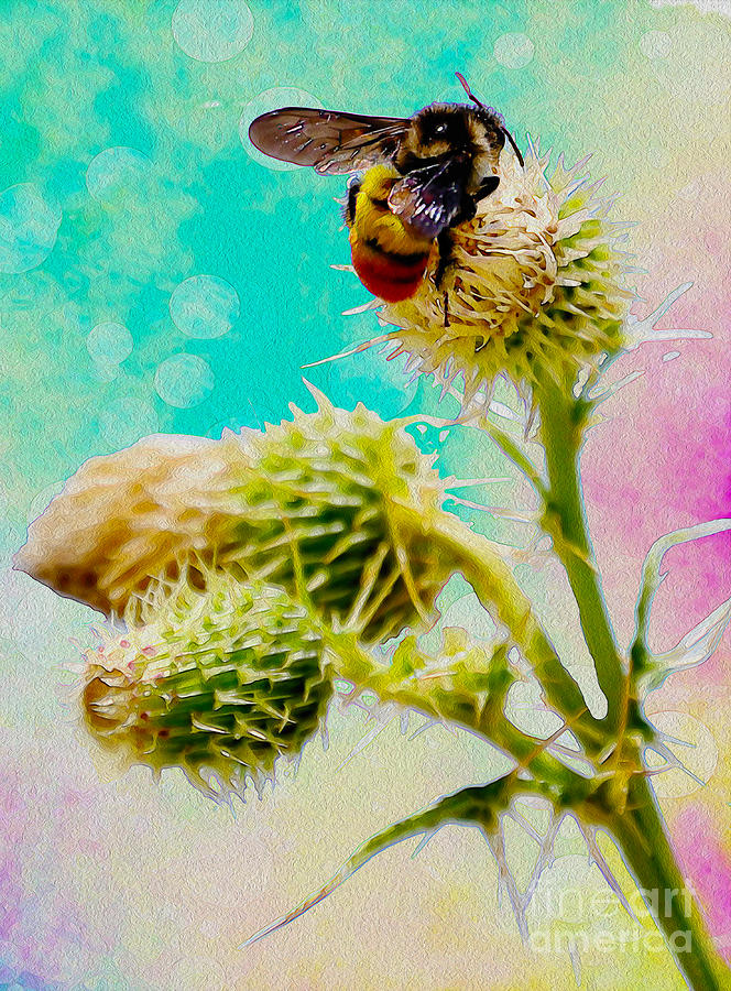 Bee Digital Art - Collection Without Distructions by Manjot Singh Sachdeva