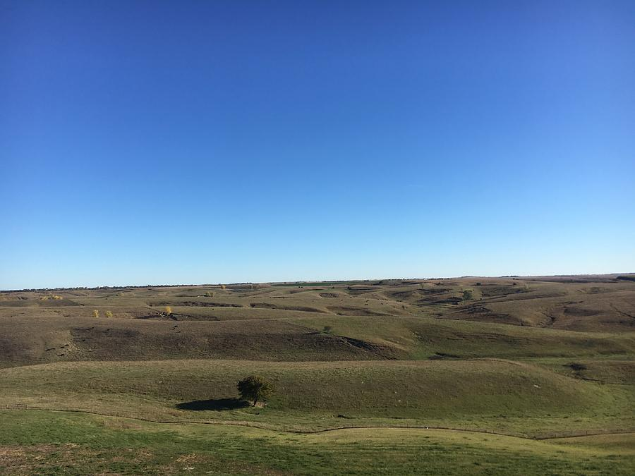 Nebraska Sandhills Photograph by Kyle Mock