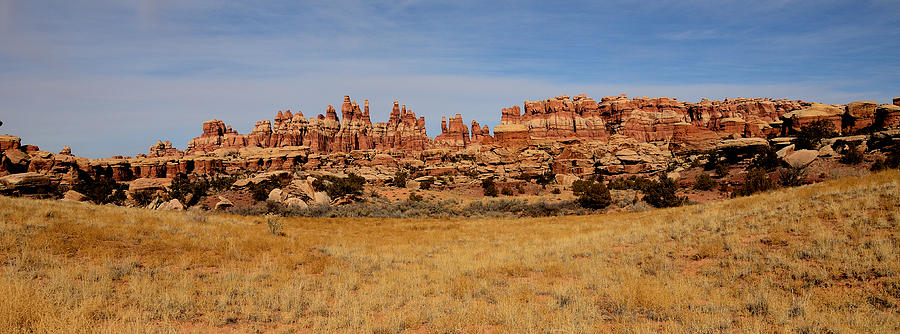 Needles at Canyonlands by Tranquil Light Photography