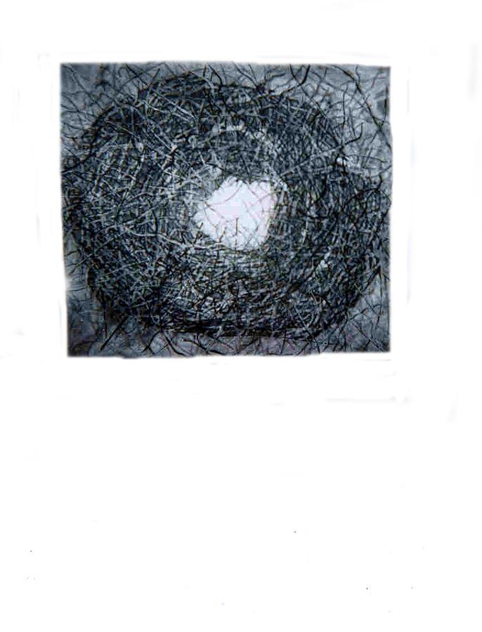 Landscape Print - No Title by Anna Klardie