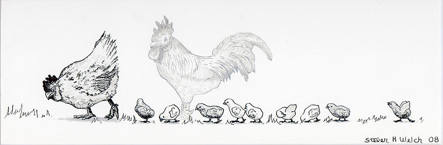 Chickens Drawing - Norman and Kathy and Kids by Steven Welch