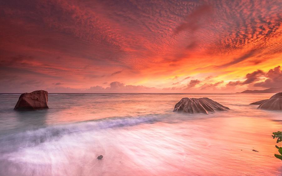 Ocean Digital Art - Ocean by Dorothy Binder