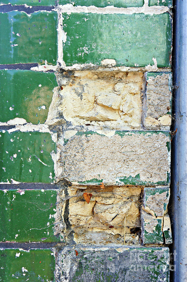 Abandoned Photograph - Old Brick Wall by Tom Gowanlock