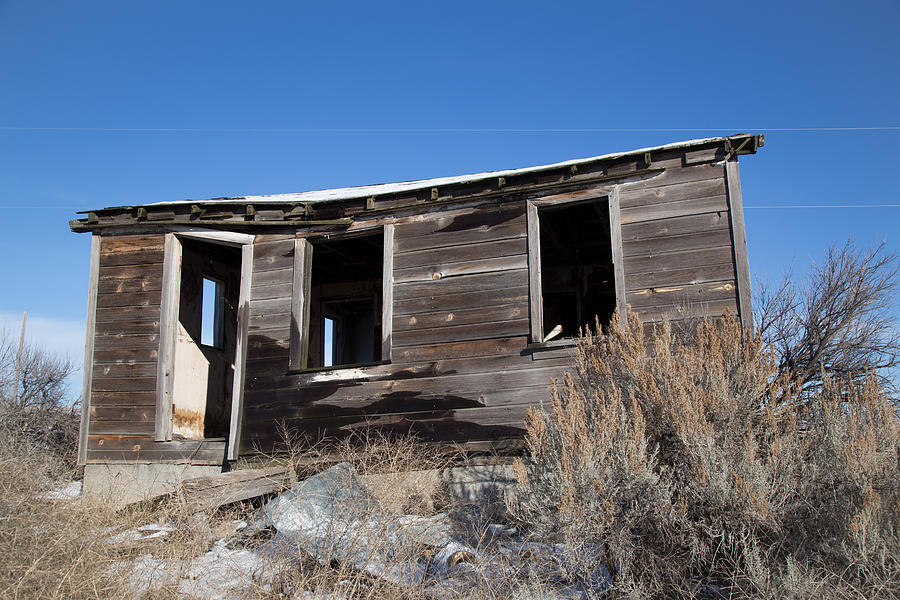 Old Cabin in Idaho, USA Photograph by Dart Humeston