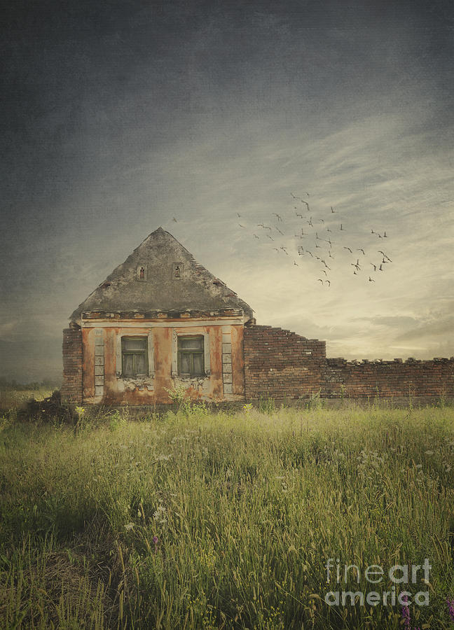 House Digital Art - Old House by Jelena Jovanovic
