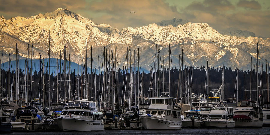 Olympics with Boats by Tony Porter Photography