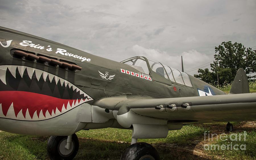 Flying Tigers Photograph - P - 40 Warhawk by David Bearden