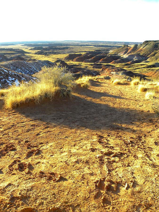 Landscape Glass Art - Painted Desert 2 by Patricia Bigelow