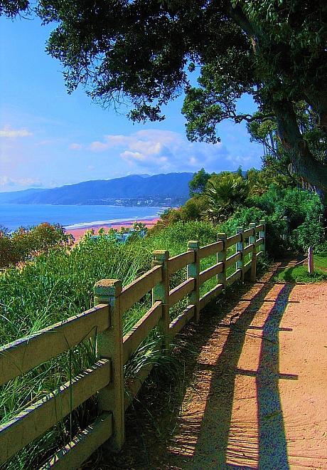 Palisades Park Santa Monica Photograph by Frank Rozasy