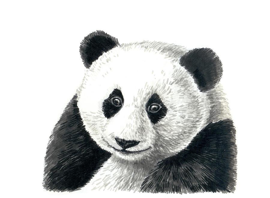 Animal Painting - Panda Bear by Katerina Kirilova