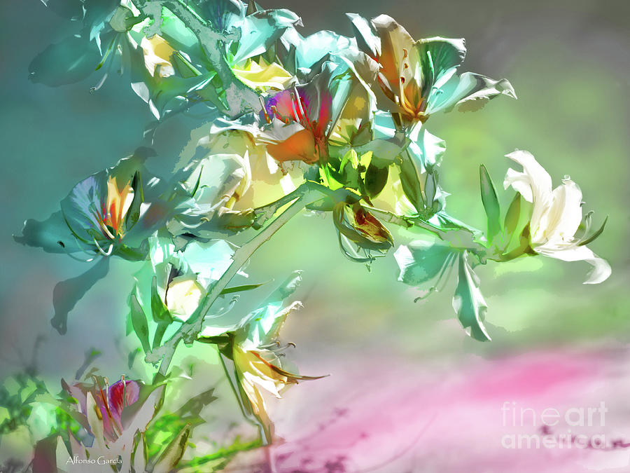 Decor Photograph - Panoplia Floral by Alfonso Garcia