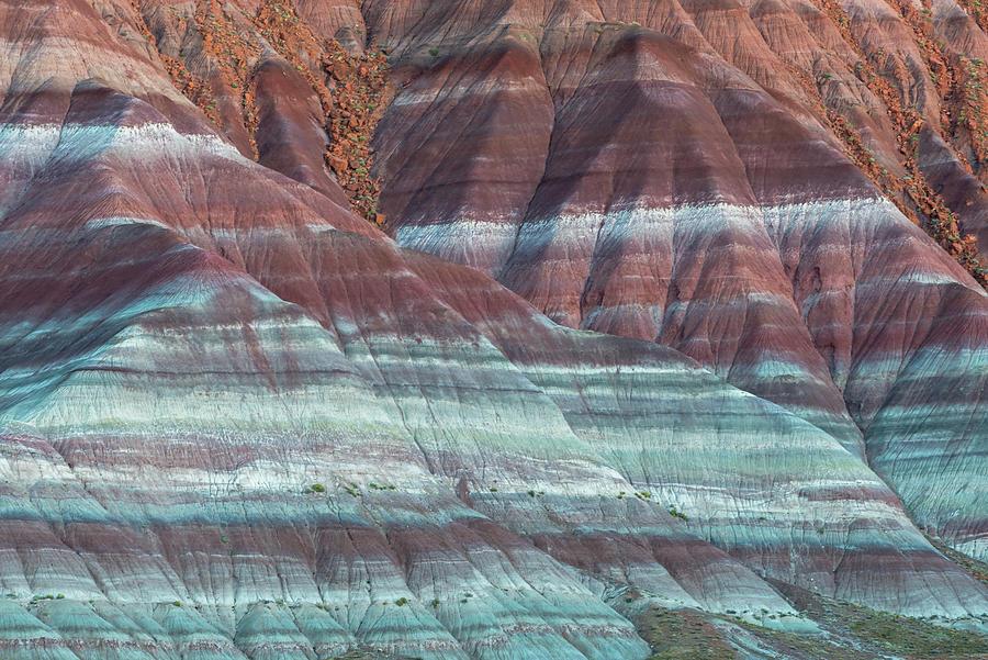 Paria Canyon by Chuck Jason