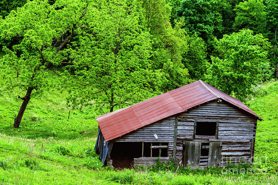 Pasture Field And Barn Photograph