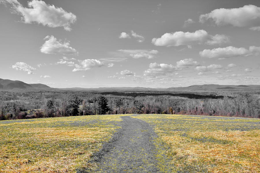 Landscape Photograph - Pathway by Brian Mooney
