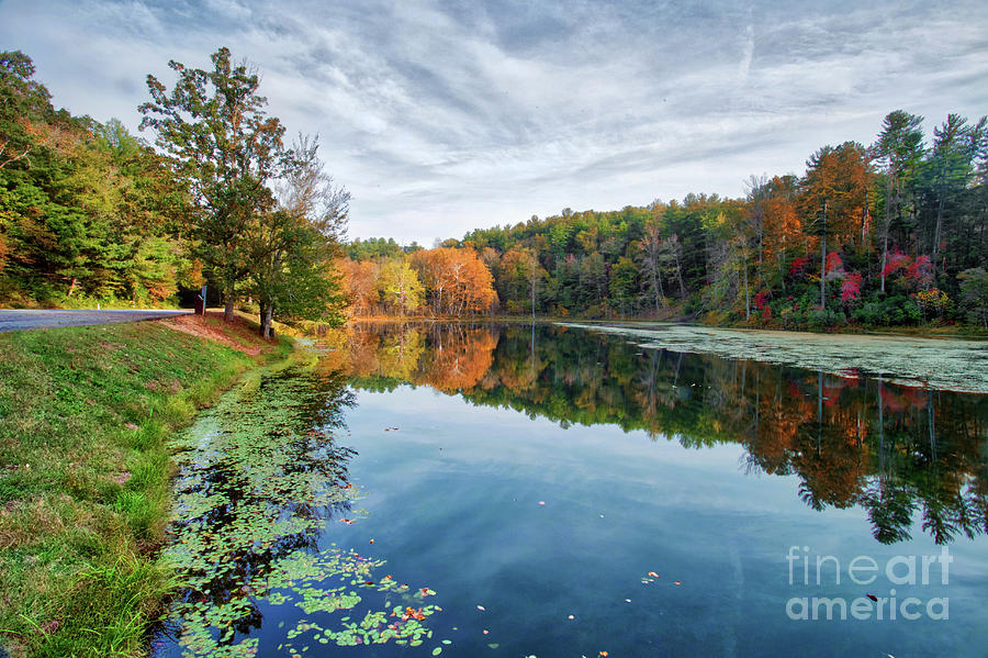 Peaks Of Otter by Tom Gari Gallery-Three-Photography
