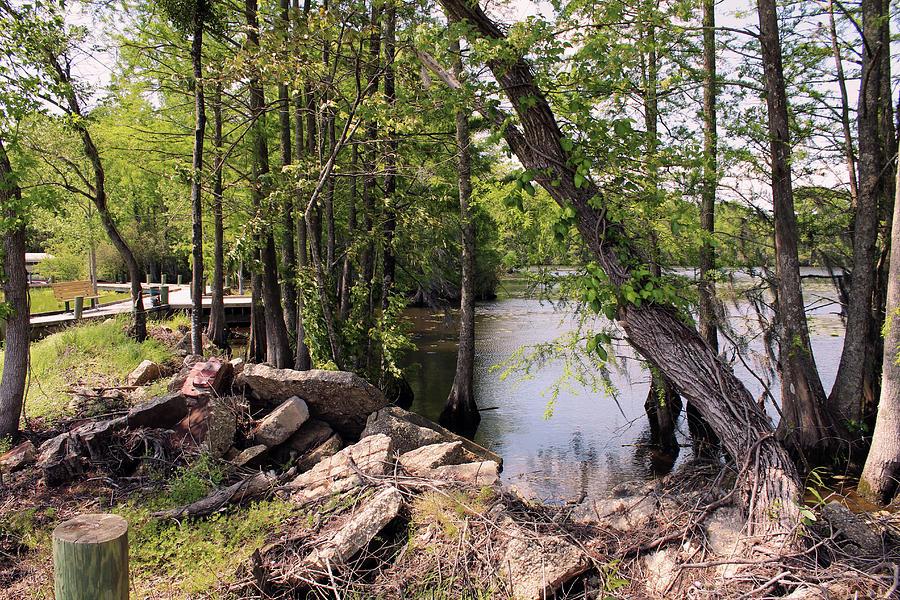 Pembroke Creek Photograph