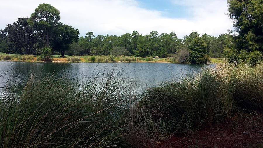 Peninsula Golf Course Photograph
