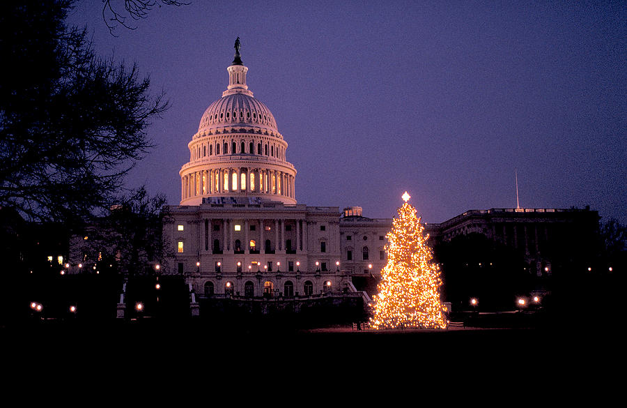 Xmas In Washington Dc Photograph by Carl Purcell