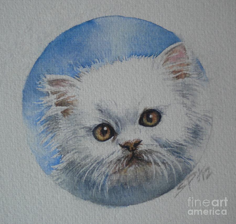 Persian kitten by Sandra Phryce-Jones