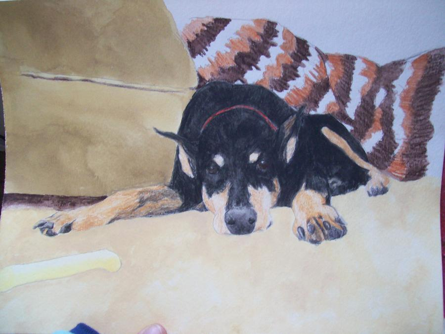 Doby Painting - Pet Portrait Doby Watercolor Memorial U Provide Picture By Pigatopia by Shannon Ivins