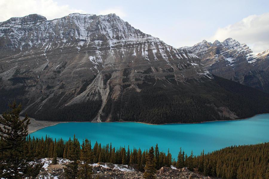 Peyto Lake Banff National Park Photograph