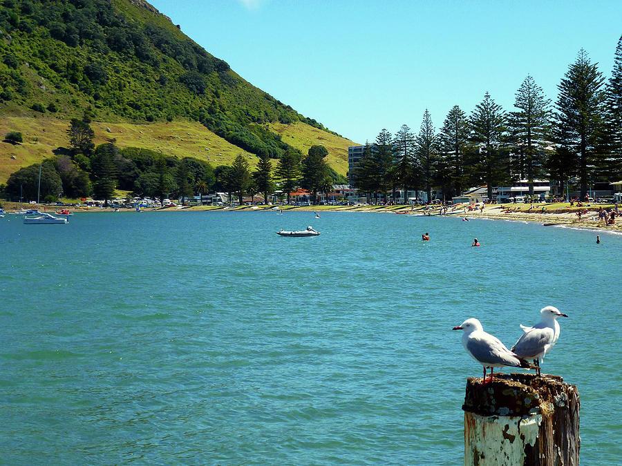 Pilot Bay Beach 5 - Mt Maunganui Tauranga New Zealand by Selena Boron
