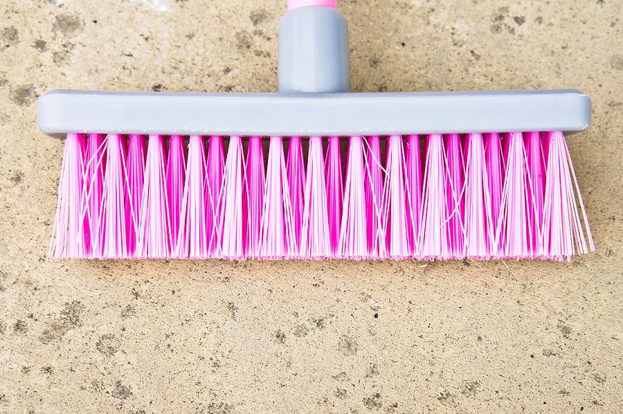Background Photograph - Pink Broom by Tom Gowanlock