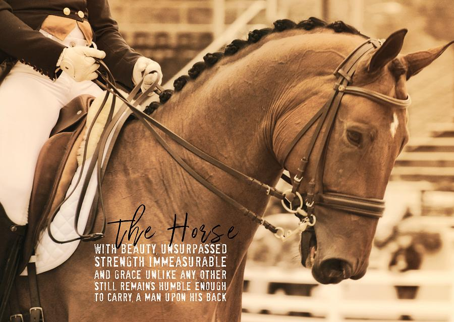 Horse Photograph - Polished Presentation Quote by JAMART Photography
