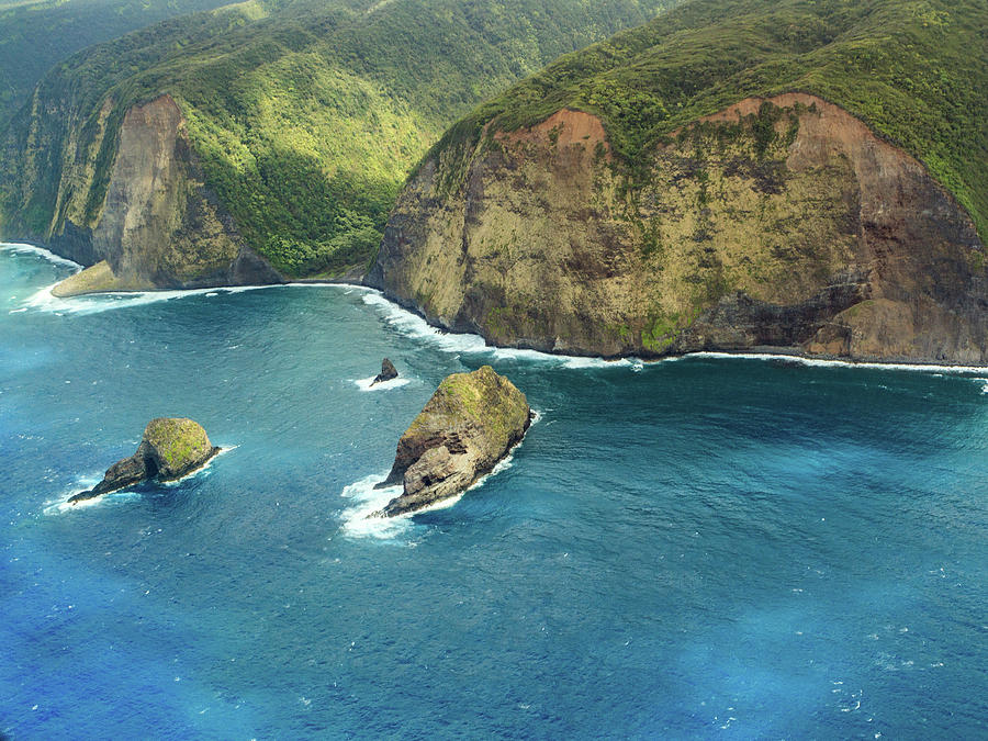 Pololu Point by Denise Bird