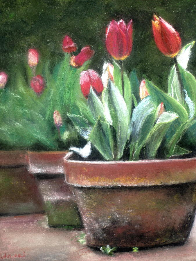 Tulips Painting - Potted Tulips by Cindy Plutnicki