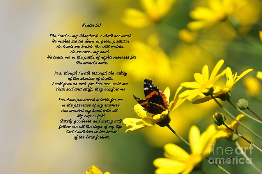 Comfort Photograph - Psalm 23 by Debby Pueschel