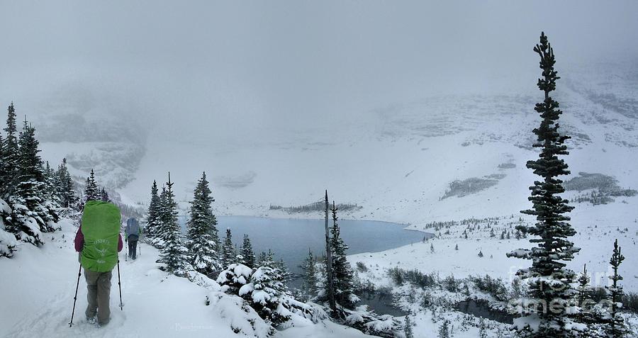 Glacier National Park Photograph - Ptarmigan Lake - Glacier National Park by Bruce Lemons