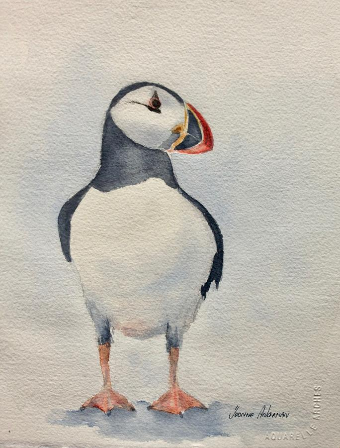 Bird Painting - Puffin by Yvonne Ankerman