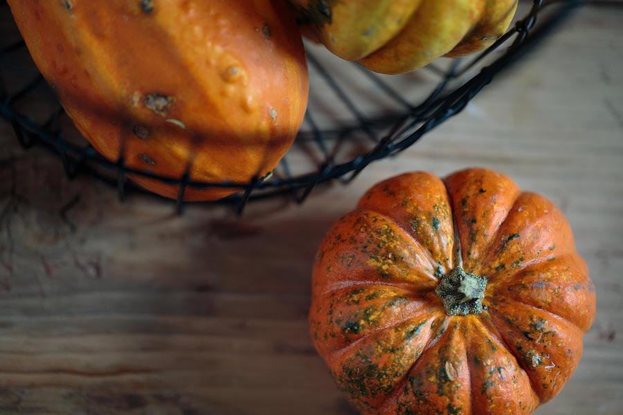Pumpkin Photograph - Pumpkin by Nailia Schwarz