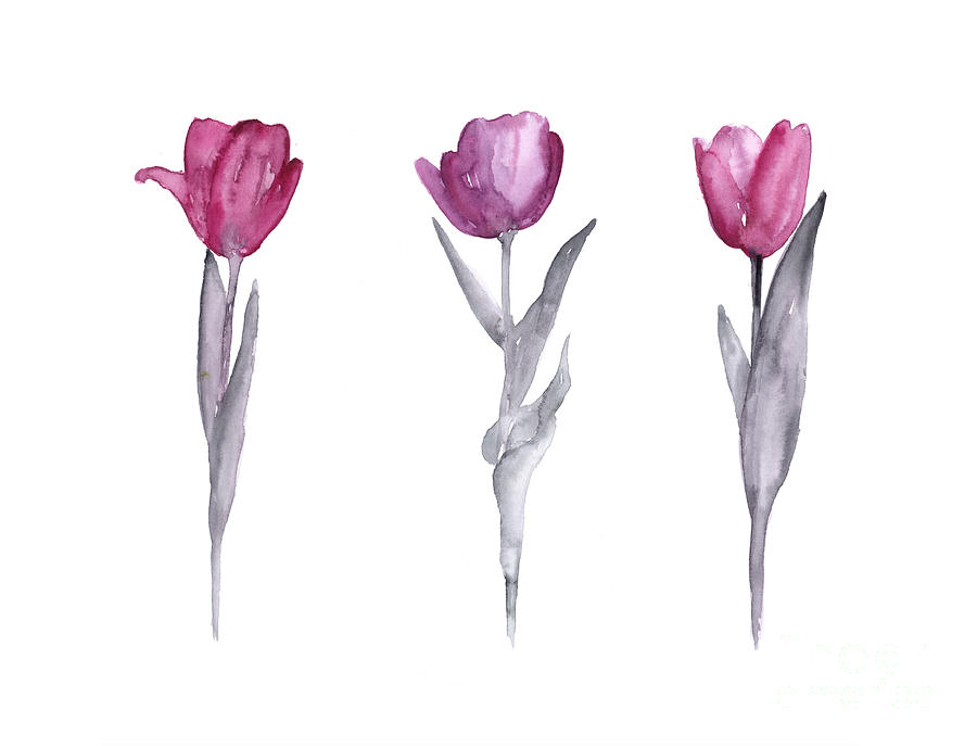 Tulips Painting - Purple Tulips Watercolor Painting by Joanna Szmerdt