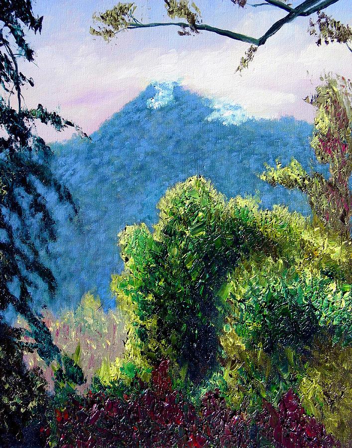 Rain Forrest Painting - Rain Forrest Mountain by Stan Hamilton