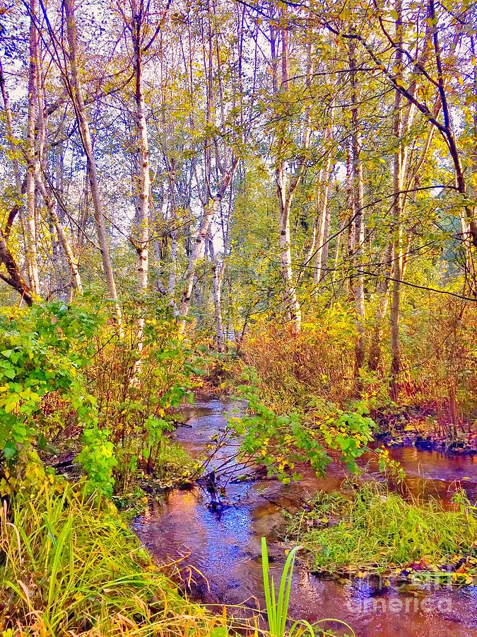 Green Digital Art - Rainbow Creek by Sue M Marshall